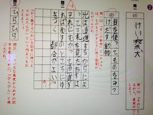 11DE5742-942A-4B51-B614-3D48AAF20E21.jpg