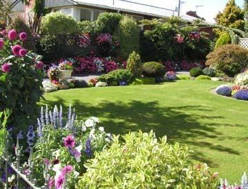 garden - コピー.jpg